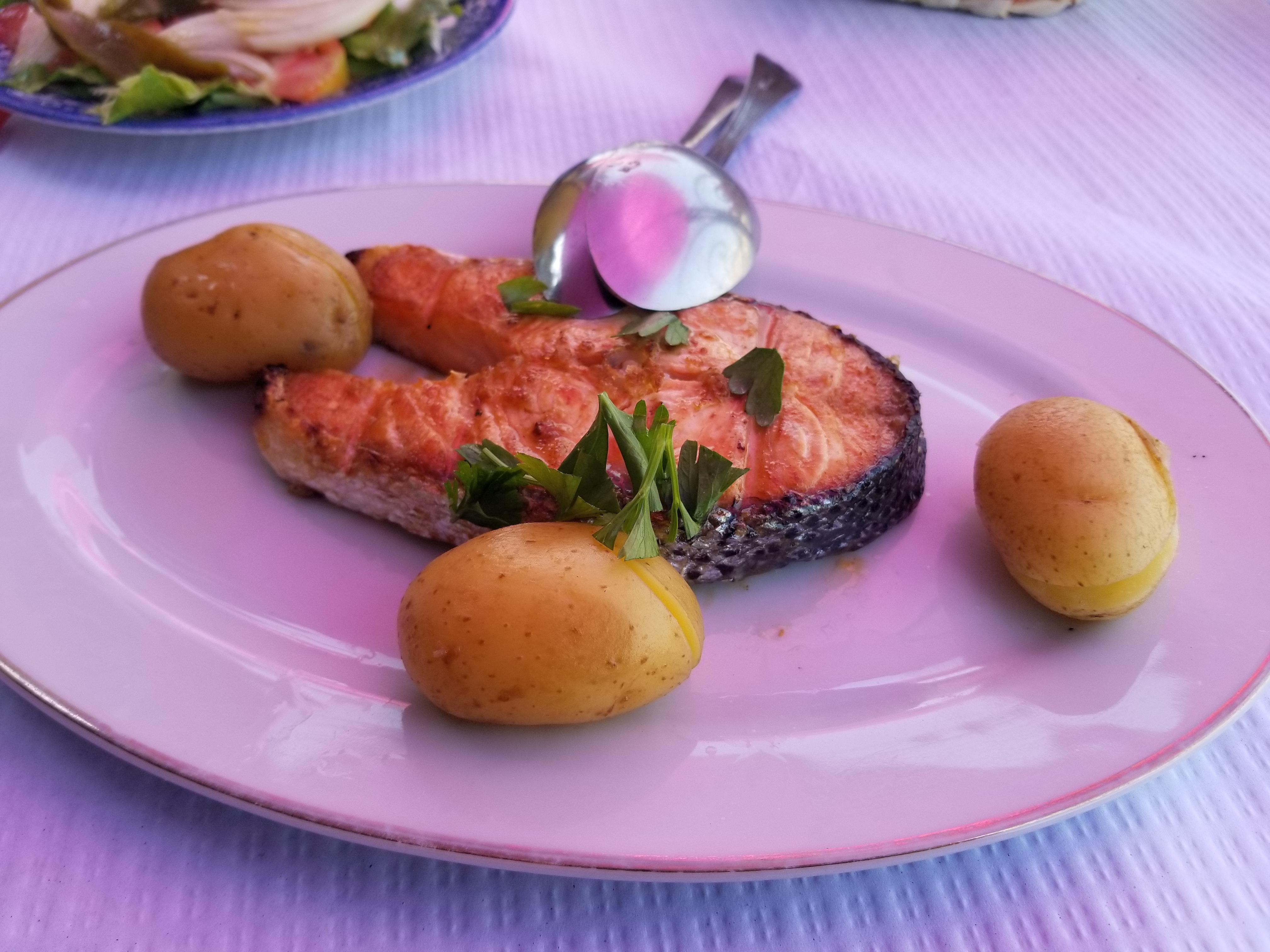 Salmon | Marissa's Teachable Moments
