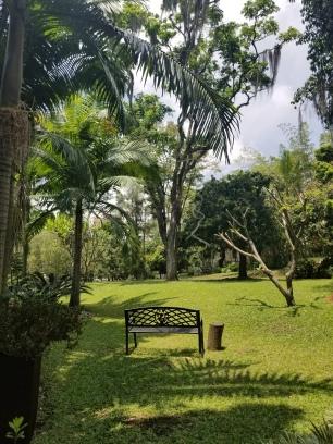 Garden at Museo el Castillo in Medellin Colombia